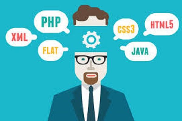 Le Développement Web a vu la création des nouveaux métiers du Web. Le point commun de ces emplois, c'est la logistique de sites Internet et autres applications du genre.